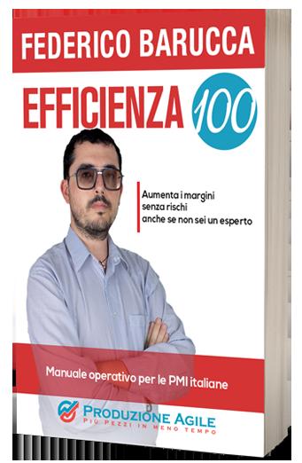 Libro Efficienza 100 | Federico Barucca